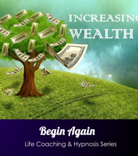 Increasing Wealth